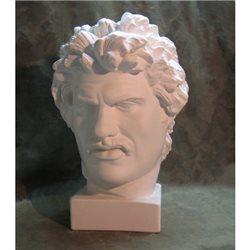 Голова Галла
